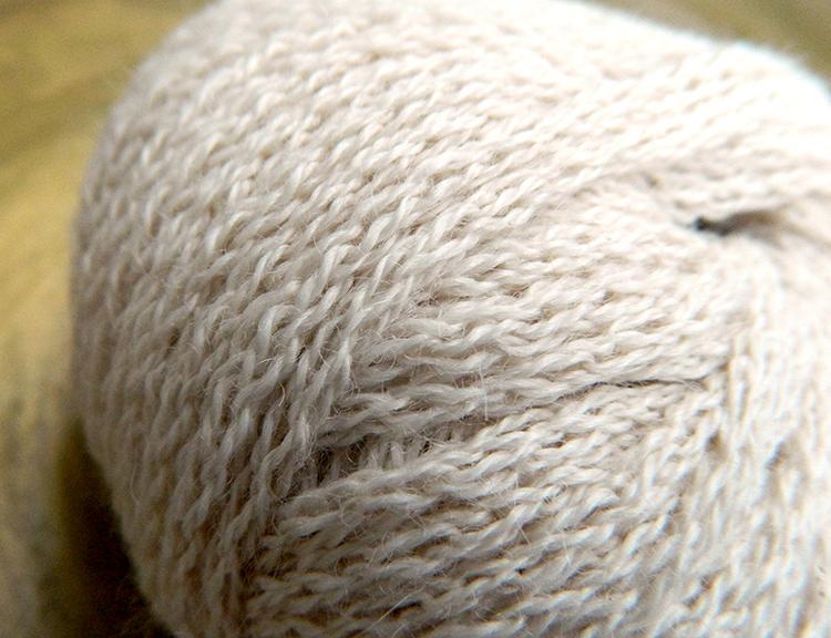 05010000_natur_detail Catalina von Lamana