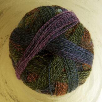 Zauberball Edition 6, Gartentage, 100% Schurwolle merino extrafein | Schoppel Wolle | © Die Maschen zum Glück