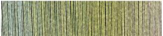 © Schoppel Wolle | Verlauf Zauberball Cotton Junges Gemüse