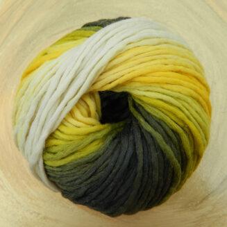 Reggae Ombré Vitamin C | Schoppel Wolle | © Die Maschen zum Glück